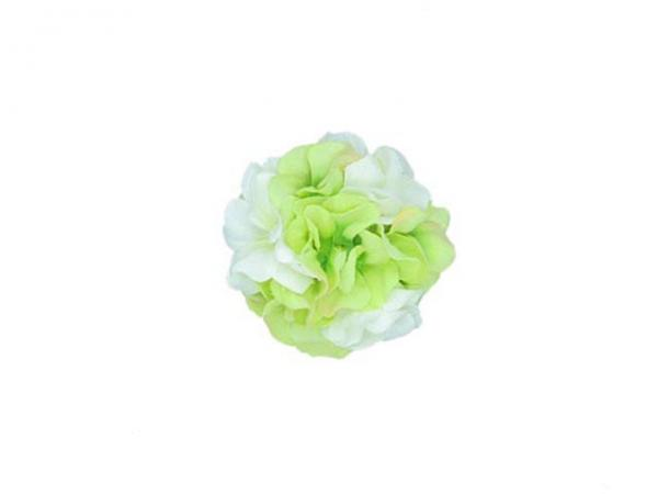 White Bloom with White Green Large Geraniums