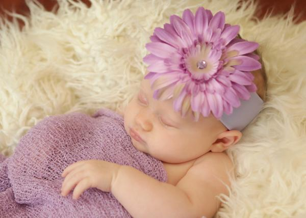 Lavender Soft Headband with Lavender Daisy