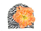 Black White Zebra Print Hat with Orange Large Peony