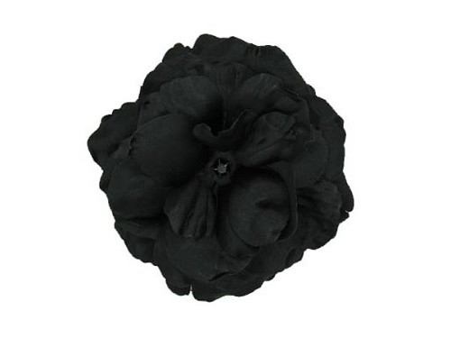 Black Bloom with Large Rose