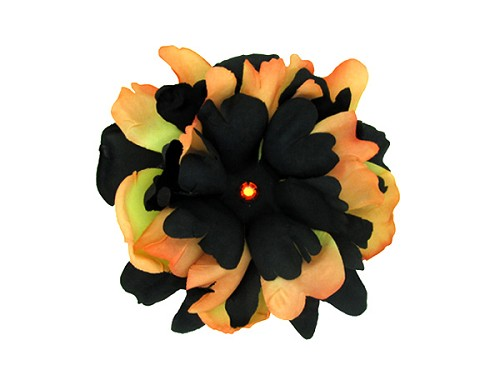 Black Orange Bloom with Black Orange Small Peony